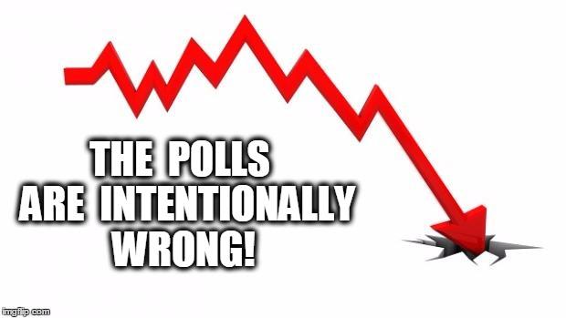 polls_meme